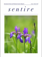 Talking Flowers Sentire magazine.pdf